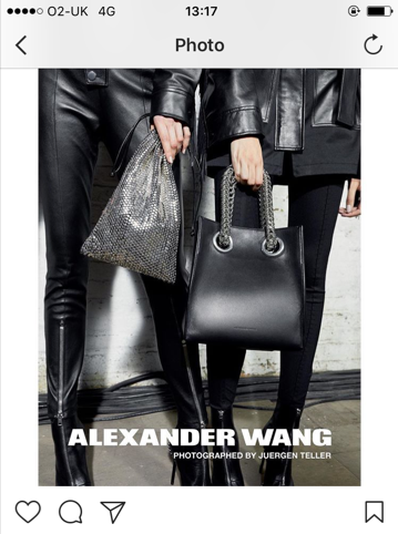 Alexander Wang Rust bag and Genesis shopper bag