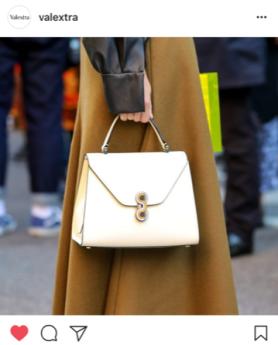 Designer handbag buckles