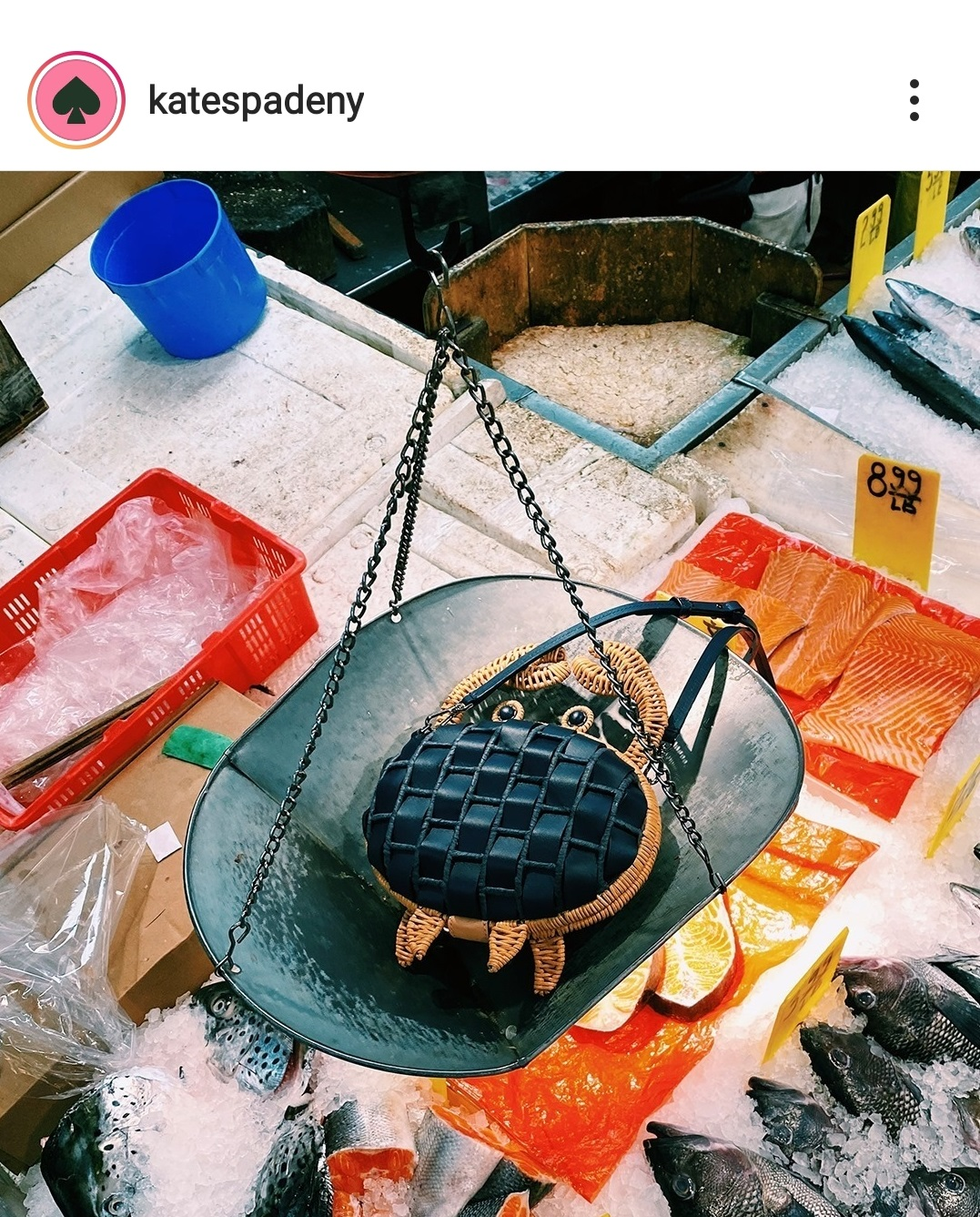 March 21 fashion bags on instagram